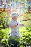 小女孩在春天森林里 免版税库存图片