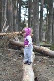 小女孩在春天森林 免版税库存图片