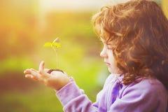 小女孩在春天的拿着绿色年幼植物户外 Ecolog 免版税库存图片