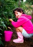 小女孩在果树园 免版税图库摄影