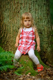 小女孩在森林里 库存照片