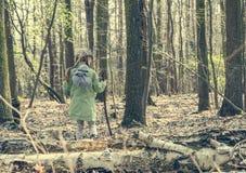 小女孩审阅森林 免版税图库摄影
