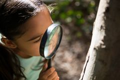 小女孩探索的自然通过放大镜在一个晴天 库存照片