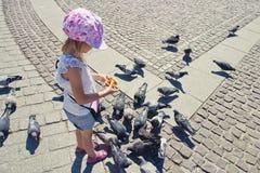 小女孩提供的鸽子 库存照片