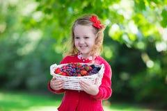 小女孩用在篮子的新鲜的莓果 图库摄影