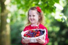 小女孩用在篮子的新鲜的莓果 库存照片