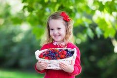 小女孩用在篮子的新鲜的莓果 免版税库存图片