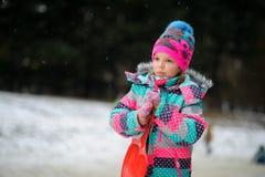 小女孩的冬天画象 免版税库存照片