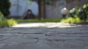 小女孩的腿石道路的 股票录像