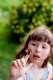 小女孩看一只蝴蝶 Aglais urticae L 库存图片