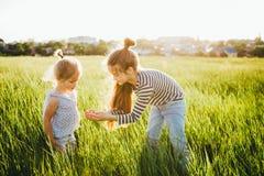 小女孩看在绿草的昆虫在领域 免版税库存图片
