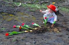 小女孩种植在被烧的地面的郁金香 免版税库存照片
