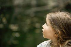 小女孩观看的树、天空和鸟在敬畏 图库摄影