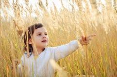 小女孩采在领域的一棵小尖峰草 库存图片