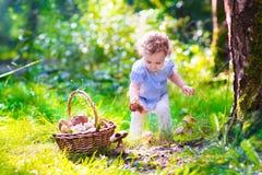 小女孩采摘蘑菇在秋天公园 库存照片