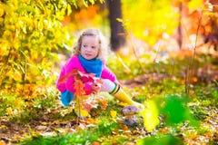 小女孩采摘蘑菇在秋天森林里 库存图片