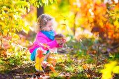 小女孩采摘蘑菇 免版税库存照片