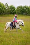小女孩骑一匹美丽的马 免版税库存图片