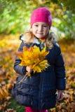 小女孩画象有槭树的在秋天公园离开 图库摄影