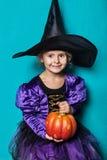小女孩画象黑帽会议和巫婆衣物的用南瓜 万圣节 神仙 传说 在蓝色背景的演播室画象 免版税库存照片