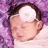 小女婴 免版税图库摄影