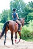小姐在森林训练过程中的骑一匹马 库存图片