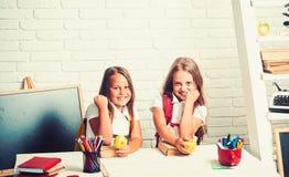 小姐妹友谊在教室知识天 在教训的愉快的学校孩子在9月1日 女孩吃 图库摄影
