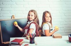 女孩吃苹果在午休时间 在教训的愉快的学校孩子在9月1日 小姐妹友谊  免版税库存图片