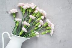 小嫩桃红色康乃馨在灰色混凝土的搪瓷花瓶开花与拷贝空间,水平 免版税库存照片