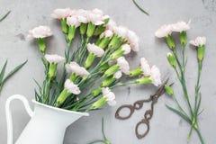 小嫩桃红色康乃馨在灰色混凝土,平展位置的搪瓷花瓶开花 免版税库存图片