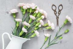 小嫩桃红色康乃馨在灰色混凝土,平展位置的搪瓷花瓶开花 图库摄影