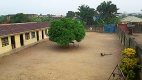 小学在拉各斯,尼日利亚 免版税库存照片