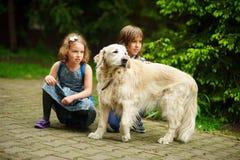 小学童在途中遇见了到学校一条大狗 免版税库存照片