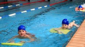小学年龄的孩子在游泳池被训练。 免版税库存图片