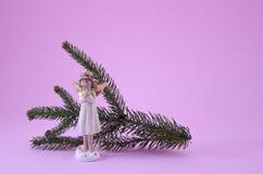 小孩天使和冷杉在桃红色分支 免版税图库摄影