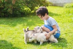 小孩抚摸许多多壳的小狗户外 库存图片
