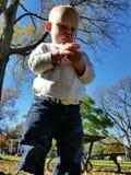 小孩探索的自然 库存照片