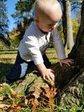 小孩探索的自然 免版税库存图片