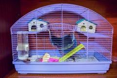 小宠物的笼子 库存图片