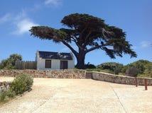 小客舱在非洲树下 免版税库存图片