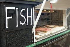 小室外鱼商店 库存图片