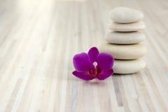 小小卵石石标,五块白色石头,一朵紫色兰花植物兰花花 免版税库存图片