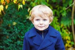 小小孩男孩画象在秋天天 库存图片