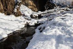 小小河在多雪的森林里 免版税库存图片