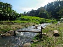 小小河通过谷的绿色村庄 库存照片