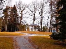 小屋和树 库存图片