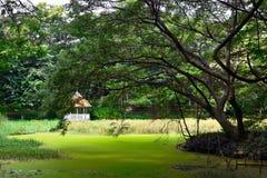 小屋在公园 免版税库存图片