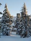 小屋在冬天 免版税图库摄影