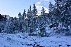 小屋在小河附近的多雪的森林里 免版税库存照片