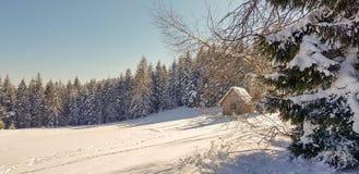小屋在森林里 库存照片